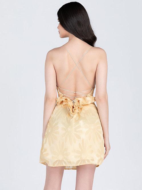 Faria Dress