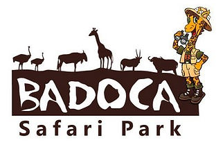 badoca-park.jpeg