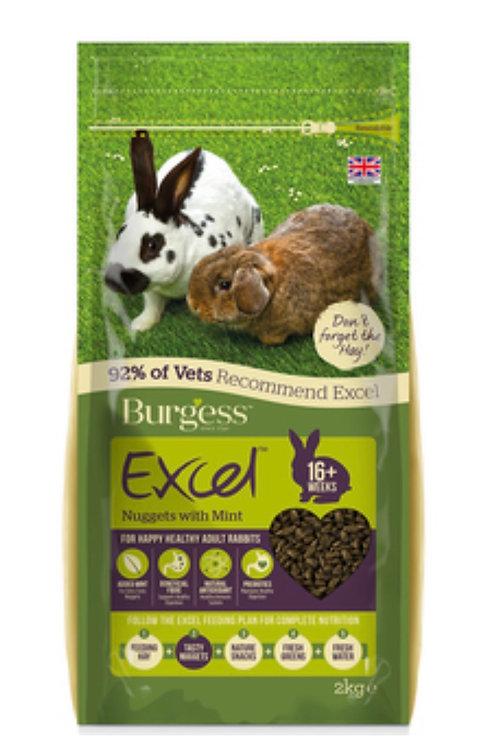 Burgess excel Rabbit Pellets with mint 2 kg