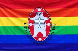 NAN Pride Flag