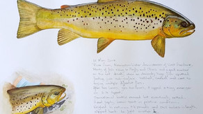 Fly fishing art by Marcel Terblanche