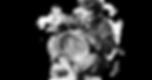 Efem-rides-culturales-para-1543714_edite