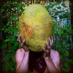 6-Jackfruit