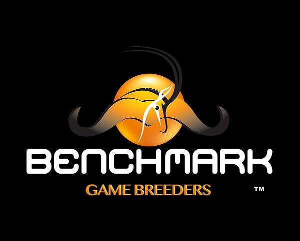 benchmark-logo white.png