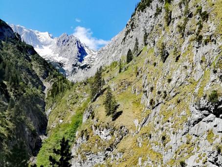 Die schönen Frühsommertage laden zu ausgedehnten Wanderungen rund um Grainau ein...