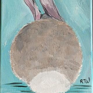 Canvas - Bunny Butt.jpg