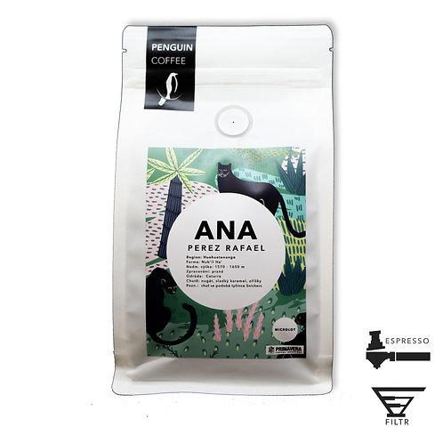 Guatemala Ana Perez Rafae B2B
