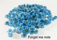 forget me nots.png