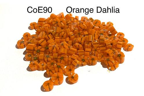 CoE90 Orange Dahlia Glass Murrini
