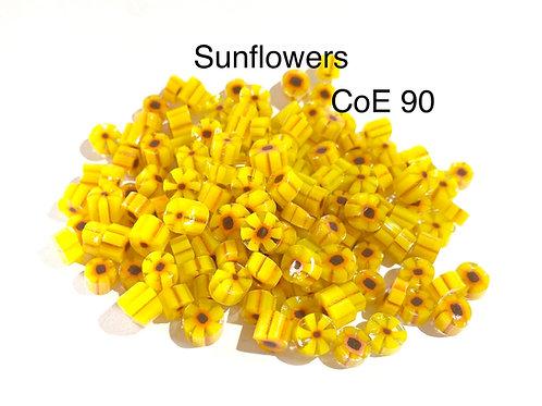 CoE 90 Sunflower Glass Murrini for Glass Artists