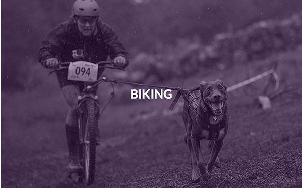 001biking.jpg