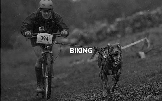001biking_edited.jpg