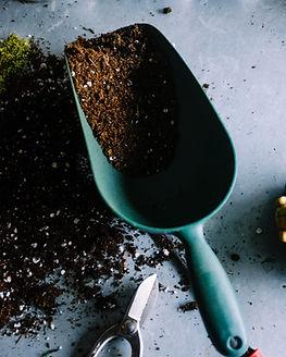 흙과 토양