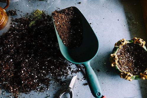 Premium Grade Multi-Purpose Compost