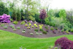 garden with trees.jpg
