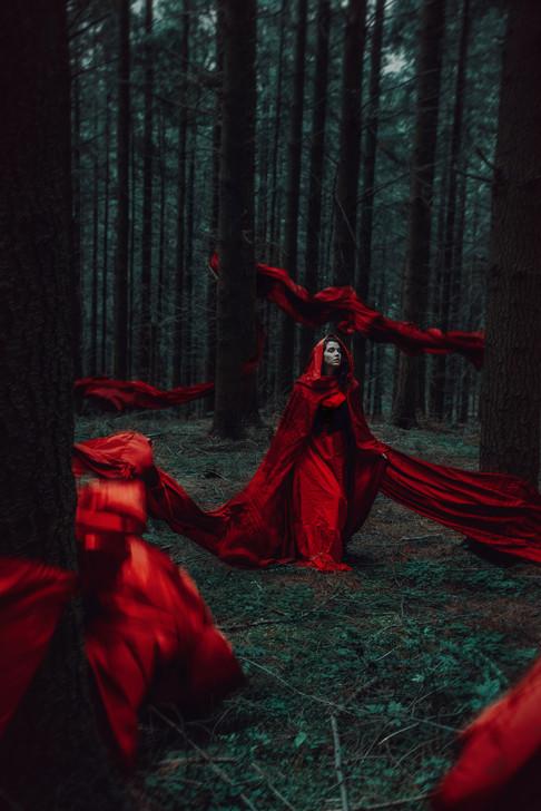 As Red as Blood.jpg
