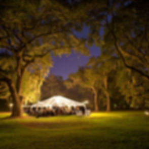 Tent in Lights