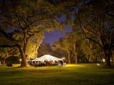 Tenda in Lights