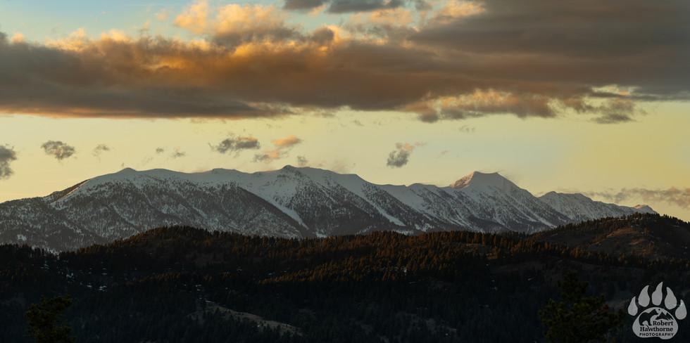 Southern view Bridgers.jpg