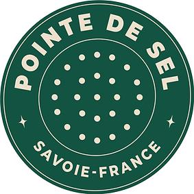 Pointe de sel .png