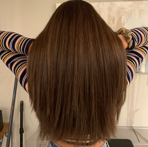 Cocoa Brown with Long Layers by Alex M