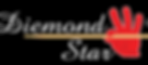 Diemond Star Logo