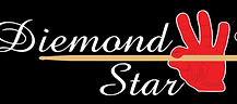 Diemond Star Logo