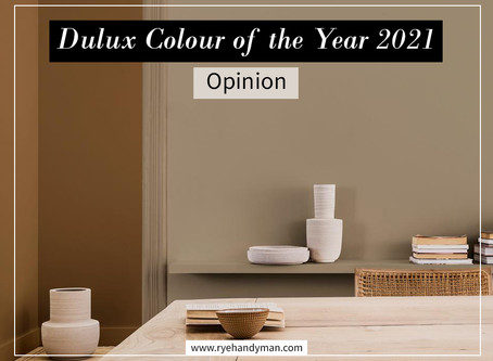 Dulux Colour of the Year 2021 - Opinion