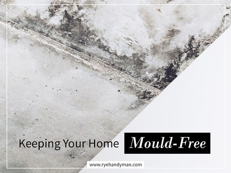 Keeping Your Home Mould Free