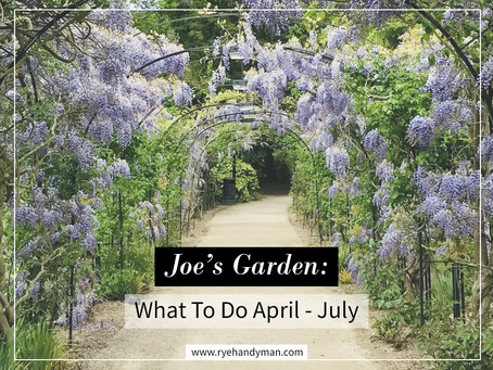 Joe's Garden: What To Do April - July