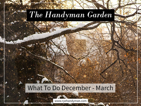 The Handyman Garden: What To Do December - March
