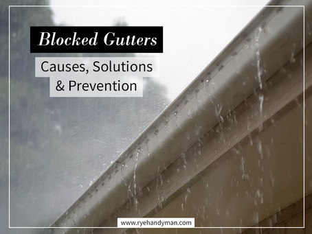 Blocked Gutters - Causes, Solutions & Prevention