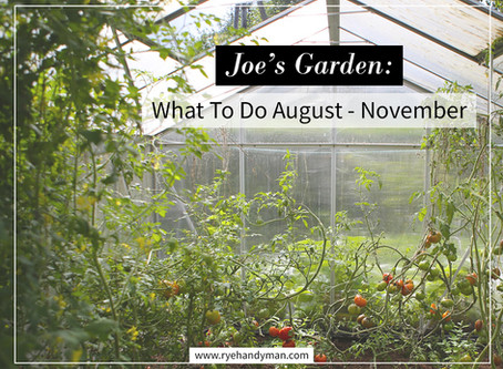 Joe's Garden: What To Do August - November