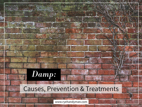Damp: Causes, Prevention & Treatments