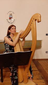 Conferenza Concerto sull'Arpa Antica Irlandese