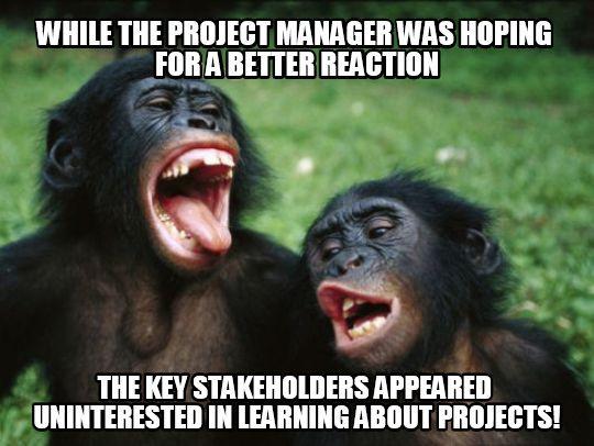 Project, program, portfolio management