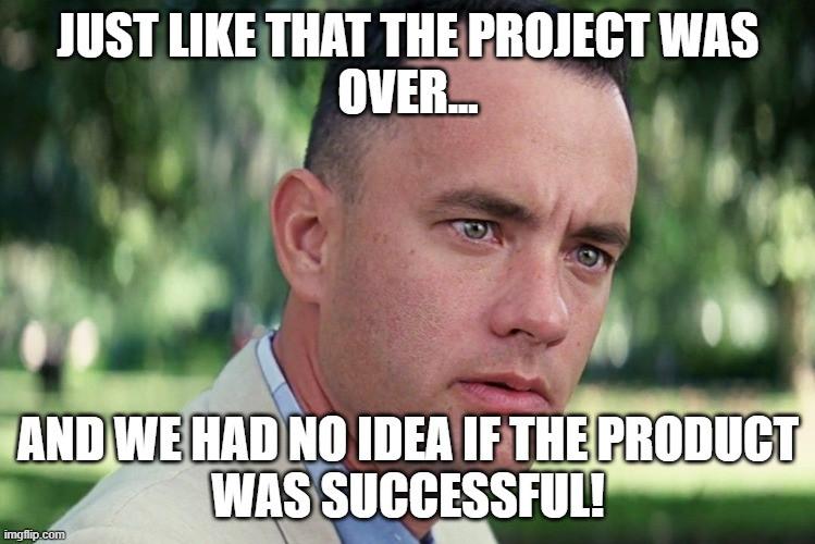 project, program, portfolio