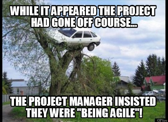 Funny meme about Agile project management
