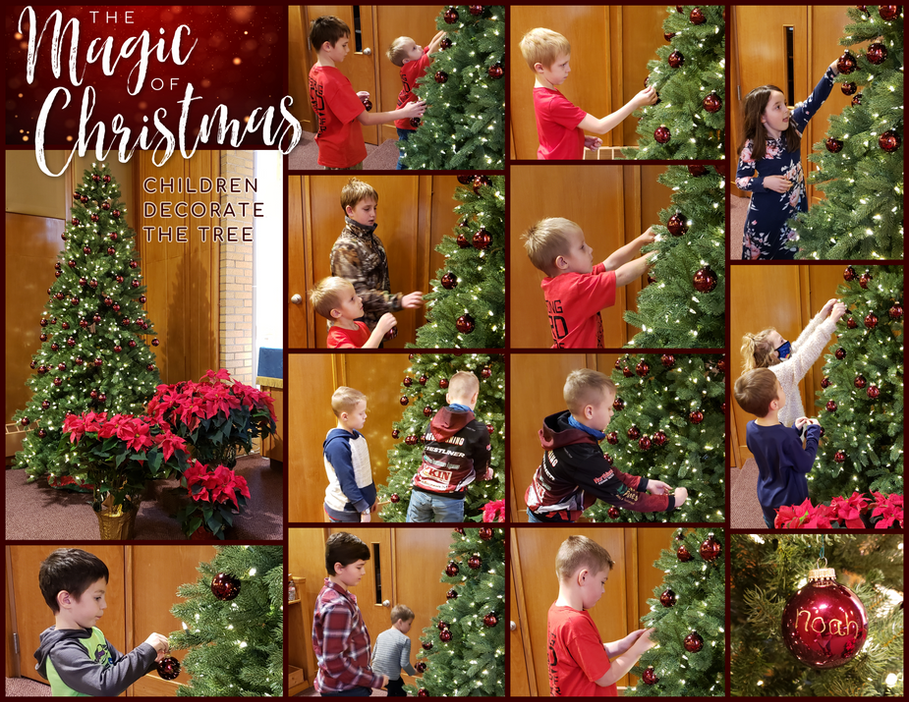 Sunday School Decorates the Tree