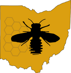 MVBA Logo
