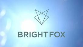 Bright Fox: NYFW 2019 Social
