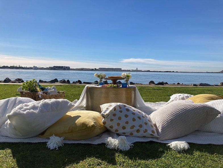 luxury picnic.jpeg