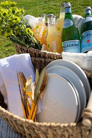 San Diego picnics.jpg
