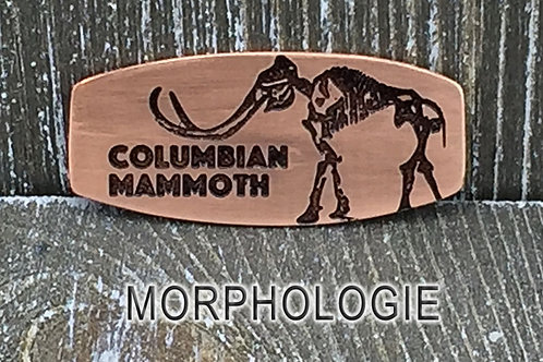 Columbian Mammoth Copper & Leather Bracelet
