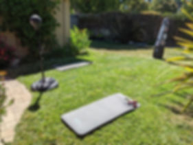 lawn with mats.jpg