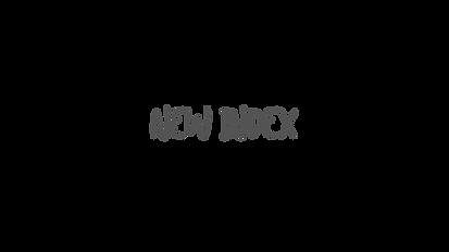 New Index