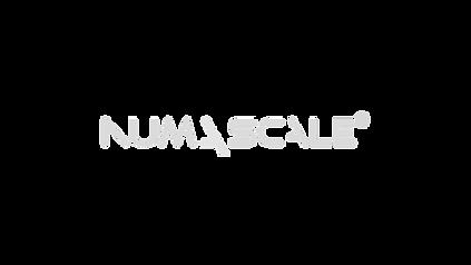 Numascale