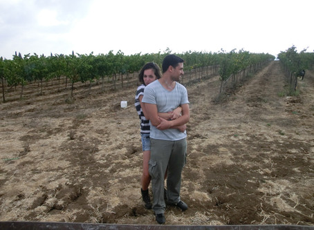 Lee's I DO moment - A marriage proposal during harvest.