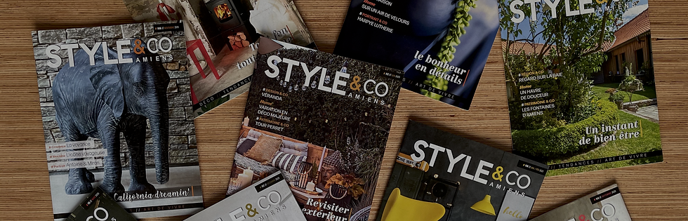 LE MAG STYLE&CO.png