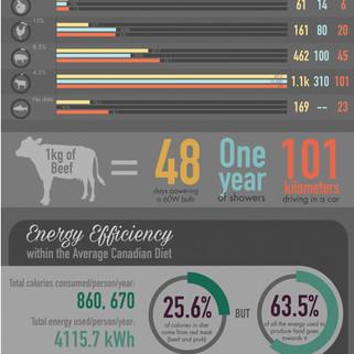 Environmental Impact of Food Poster
